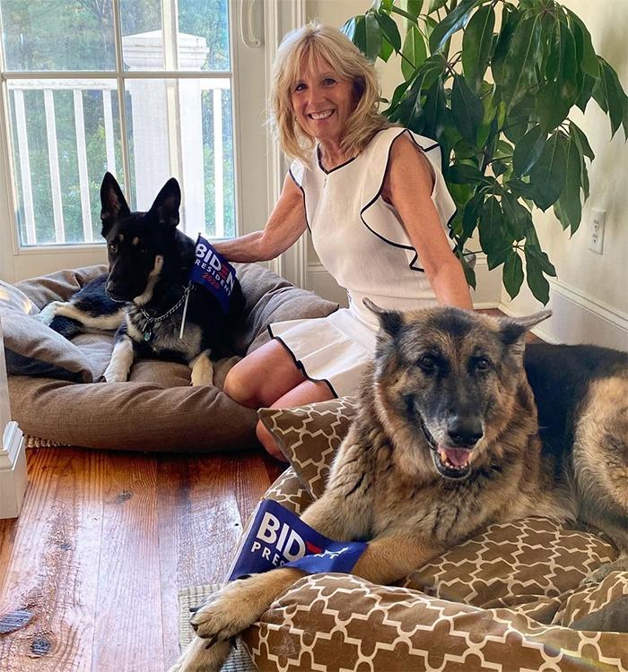 Les chiens de Joe et Jill Biden