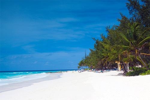 Plage de rêve à la Barbade